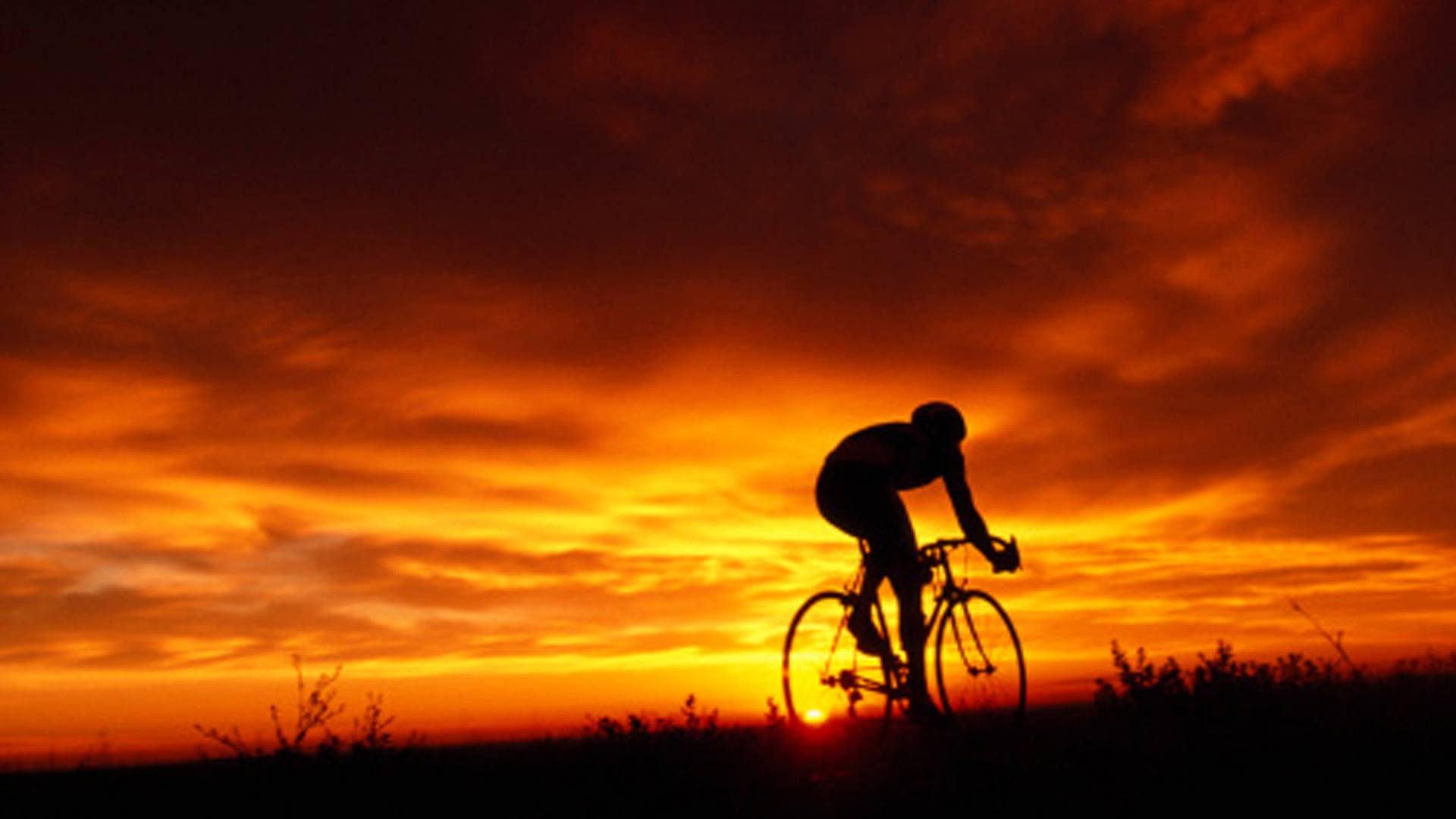 Image result for ride into the sunset